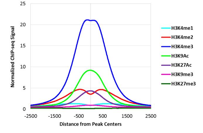 ATAC-Seqの受託解析ならアクティブ・モティフ