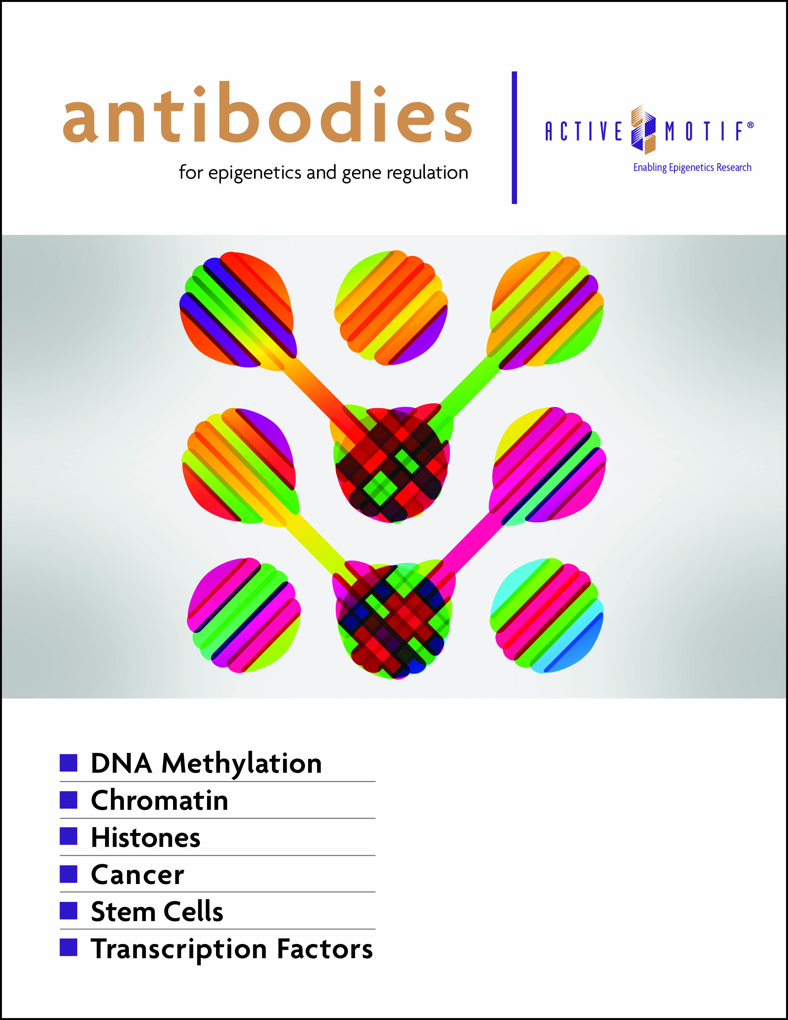 Antibodies for Epigenetics & Gene Regulation