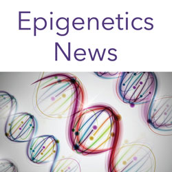 Epigenetics News Signup Form