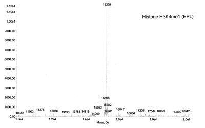 ESI-TOF mass spectrometry of Recominant Histone H3K4me1 (EPL)