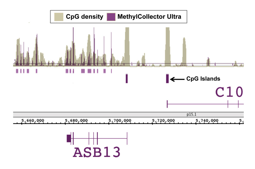 Next-Gen sequencing data generated using MethylCollector Ultra enriched DNA correlates with CpG density