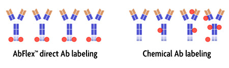 AbFlex directed labeling versus chemical labeling