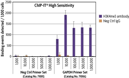 PCR analysis showing successful ChIP using samples from 1,000 cells