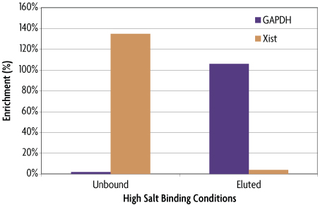 Real time PCR analysis of HypoMethylCollector™ using high salt binding conditions