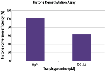 Histone Demethylase LSD1 (KDM1) inhibition by Tranylcypromine.