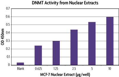 DNMT Activity / Inhibition Assay with MCF-7 nuclear extracts.