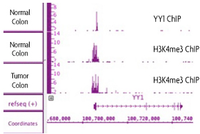 FFPE ChIP-Seq results of normal and tumor human colon samples.