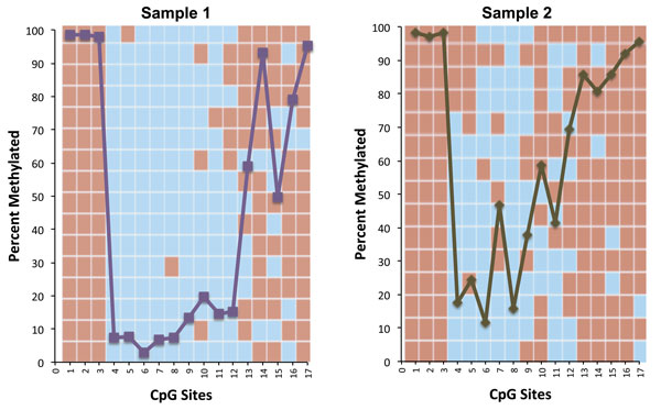 Comparison of data generated by Active Motif Epigenetic Services comparing Sanger and Targeted Next-Gen Bisulfite Sequencing methods