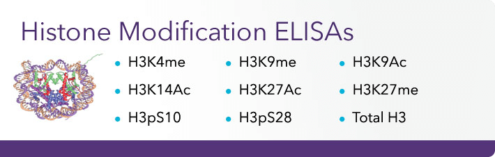 Histone Modifications ELISAs