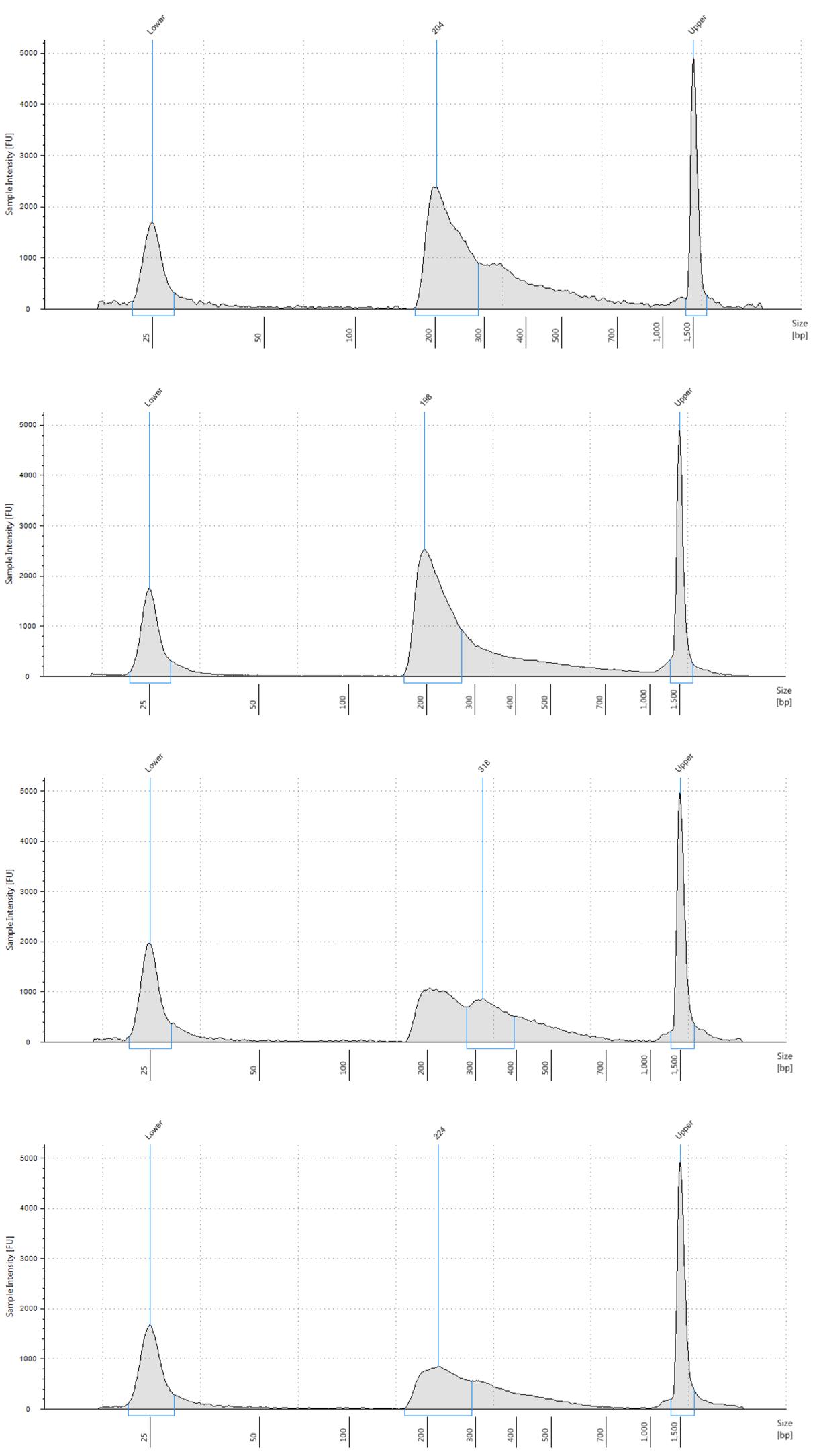 ATAC-Seq Kit   ゲノムワイドなオープンクロマチン領域解析