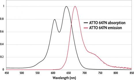 Absorption and emission spectra of ATTO 647N (STED/GSD) Dye.