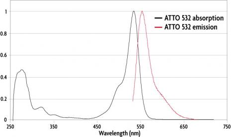Absorption and emission spectra of ATTO 532 (GSD) Dye.