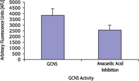 Recombinant KAT2A (GCN5) protein activity assay
