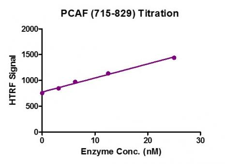 Recombinant PCAF (715-829) protein activity assay.