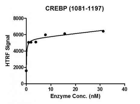 CREBBP (1081-1197) HTRF activity assay