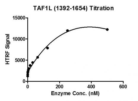 TAF1L (1392-1654) activity assay