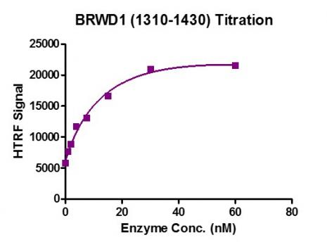 HTRF Assay for Recombinant BRWD1 (1310-1430) protein activity.