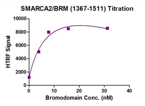 HTRF Assay for SMARCA2 / BRM (1367-1511) activity.