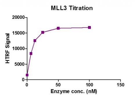 Recombinant KMT2C (MLL3) complex  activity assay