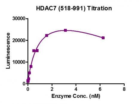 HDAC-Glo Class IIa Assay for HDAC7 activity