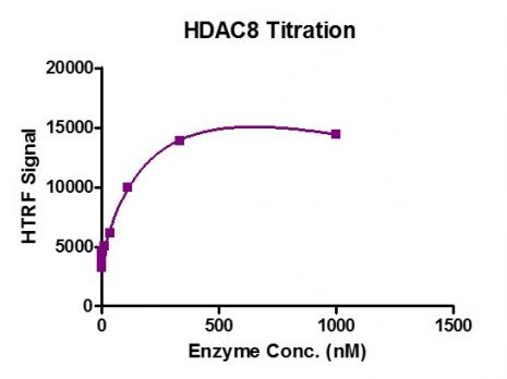 HTRF assay for HDAC8 protein activity