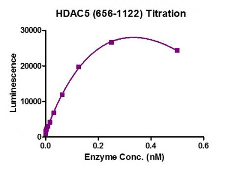 HDAC-Glo Class IIa Assay for HDAC5 (656-1122) activity