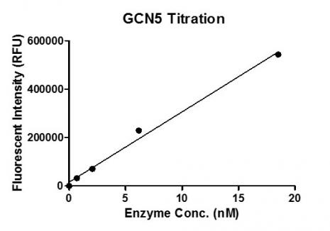 Recombinant KAT2A (GCN5) protein activity assay.