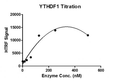 HTRF Assay for Recombinant YTHDF1 protein activity.