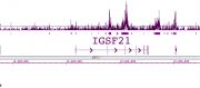 Histone H2BK120ac antibody (pAb) tested by ChIP-Seq.