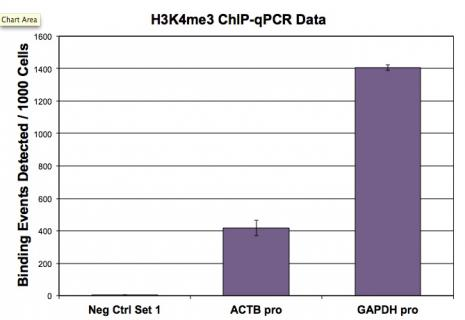 Histone H3K4me3 antibody (pAb) tested by ChIP.