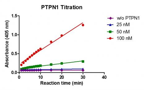 Recombinant PTPN1 (1-321) activity assay.